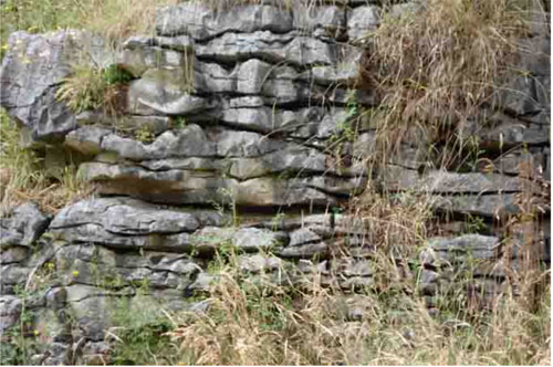 Limestone Outcrop (Source: Short 2010)