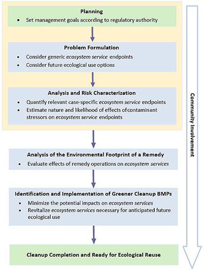 Design, Construction, and Operations Ecosystem Services