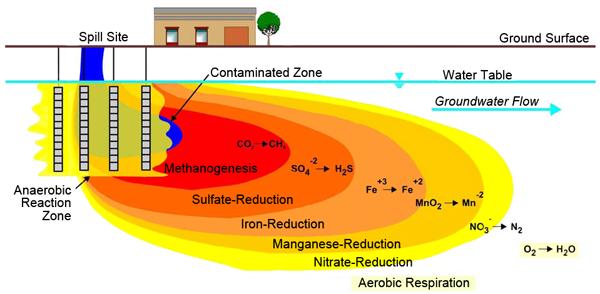 bioremediation and petroleum hydrocarbons essay